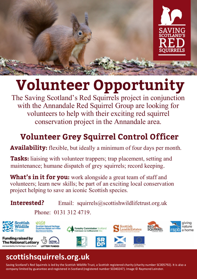 Volunteer Opportunity – Grey Squirrel Control Officer