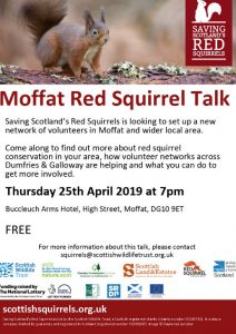 Moffat Red Squirrel Talk – April 2019